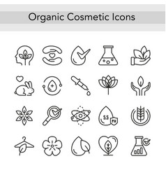 Organic eco beauty cosmetics thin black line icons vector