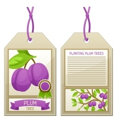 Sale tag of seedlings plum trees Instructions for vector image