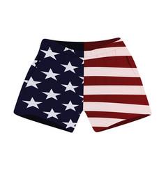 Usa flag shorts vector