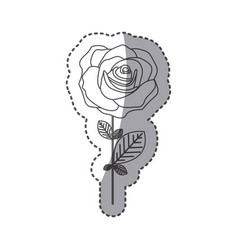 Silhouette rose with petals and leaves icon vector