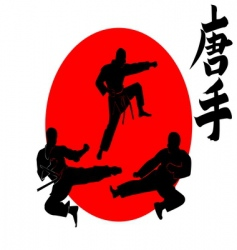 three silhouettes karate vector image vector image