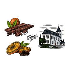 alcohol production plant cognac castle chocolate vector image