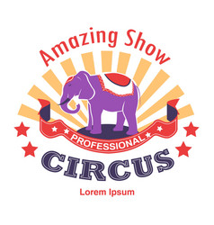 amazing show circus with trained animals isolated vector image