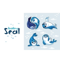 Baby Seal Sticker Collection Set vector image