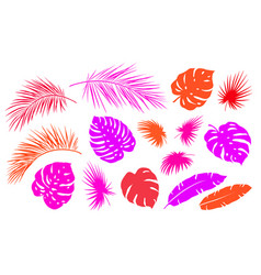 colorful tropical palm leaves branches set icons vector image