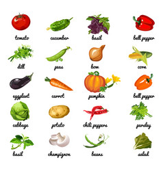 cute poster on topic of healthy diet vegetables vector image