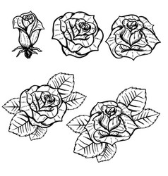 set of old school tattoo style roses isolated on vector image