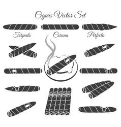 Hand drawn cigars vector image