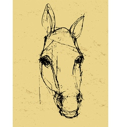 horse sketch on paper vector image vector image