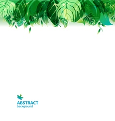 green leaves on gradient background vector image