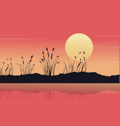 Silhouette of lake with coarse grass landscape vector