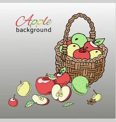 apple basket background banner vector image