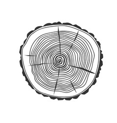 cross section of the tree vector image