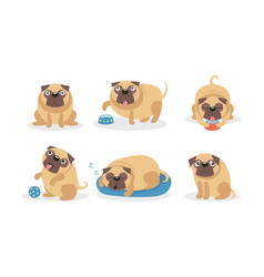 Cute cartoon pugs in different situations vector