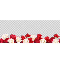 red roses border vector image
