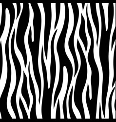 Zebra seamless pattern vector