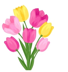 Bouquet of flowers tulips on white background vector