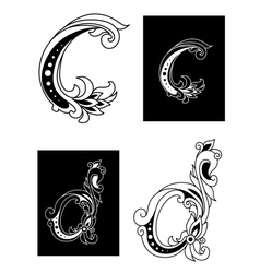 Decorative letters C and D vector