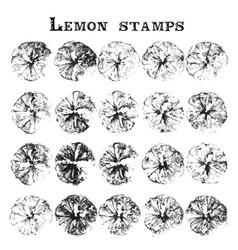 set of orange fruit stamps orange marks on paper vector image
