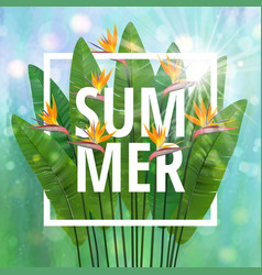 summer typographical background with tropical vector image