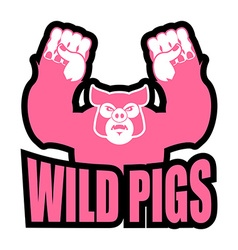 Wild pigs logo for sports team Angry pig vector