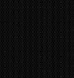Black Carbon Texture vector image