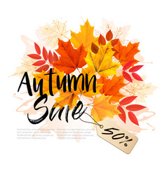 Autumn sale card with colorful leaves vector