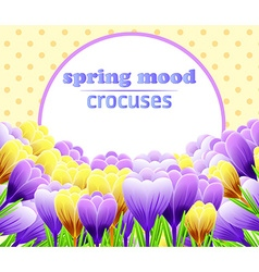Card with crocuses Spring flower Perfect for vector image