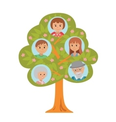 Cartoon generation family tree in flat style vector