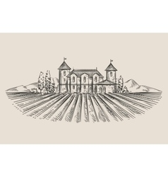vineyard hand-drawn sketch vector image
