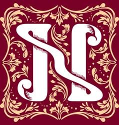 vintage letter N vector image vector image