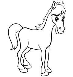 white horse isolated hand drawn stock vector image