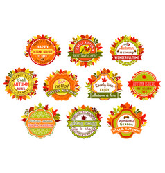 Autumn label and badge set of fall nature leaf vector