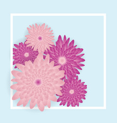 beautiful pink flowers on light blue background vector image