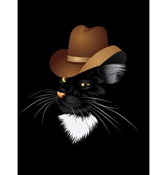 Cat cowboy vector image