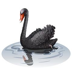 Gray goose vector