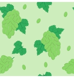 Seamless Pattern with White Grapes on Light Green vector image