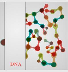 Set brochure poster templates in dna molecule vector