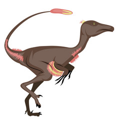 Troodon on white background vector
