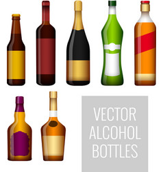 bottles of alcohol vector image