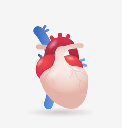 anatomical heart icon human body internal organ vector image