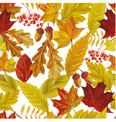 autumn leaves seamless pattern white background vector image
