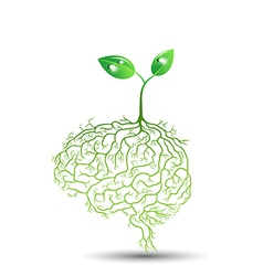 concept of brain seedling vector image