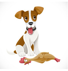 cute cartoon jack russell terrier dog with rubber vector image