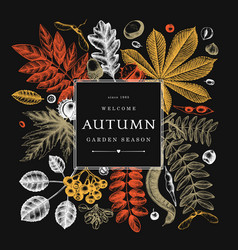 Hand sketched autumn leaves design in color vector