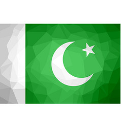 Pakistan polygon flag vector