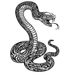 stylized snake black and white vector image