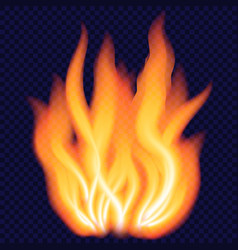 big fire concept background realistic style vector image