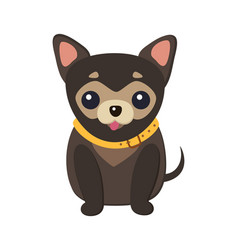 Chihuahua dog picture poster vector
