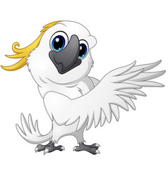 cute parrot cockatoo cartoon posing vector image